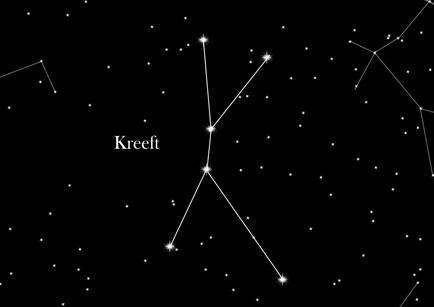 Afbeeldingsresultaat voor sterrenbeeld kreeft